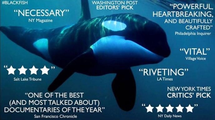 documental-blackfish-04-una-mama-novata