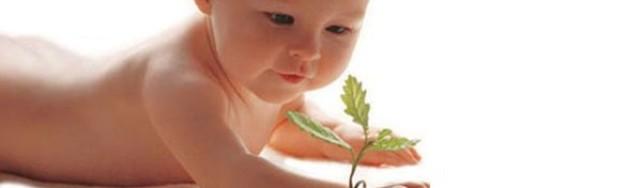 alimentacion-ecologica-infantil-00-una-mama-novata